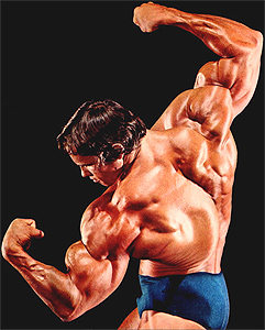 The Ultimate Arnold Training Guide - A1Supplements com Articles