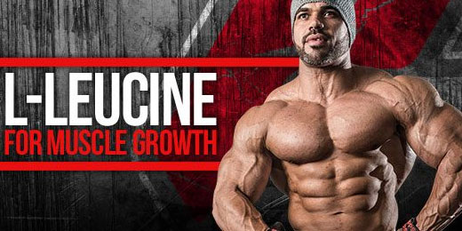 Can The BCAA Valine Drive Muscle Loss? - A1Supplements com