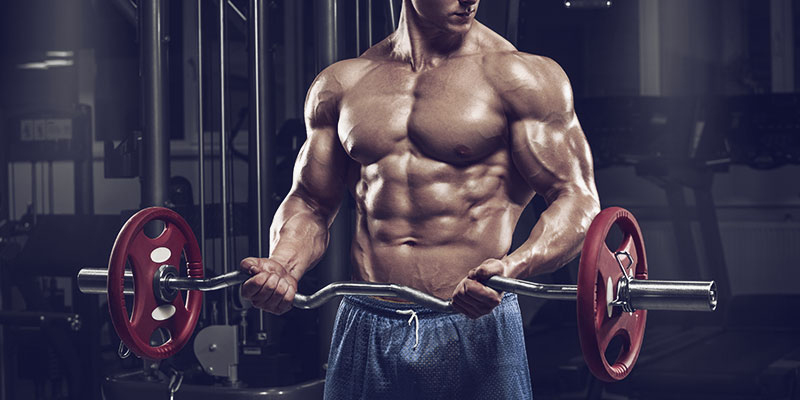 The Do S And Don Ts For Bigger Biceps A1supplements Com