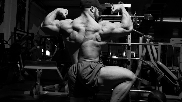 A1Supplements Animal Competition